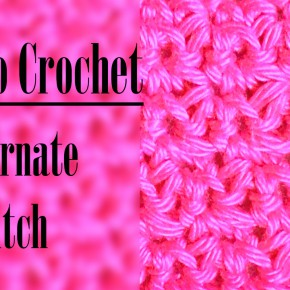 Crochetpedia – How to crochet Alternate Stitch| Crochet Series| Craftziners# 17